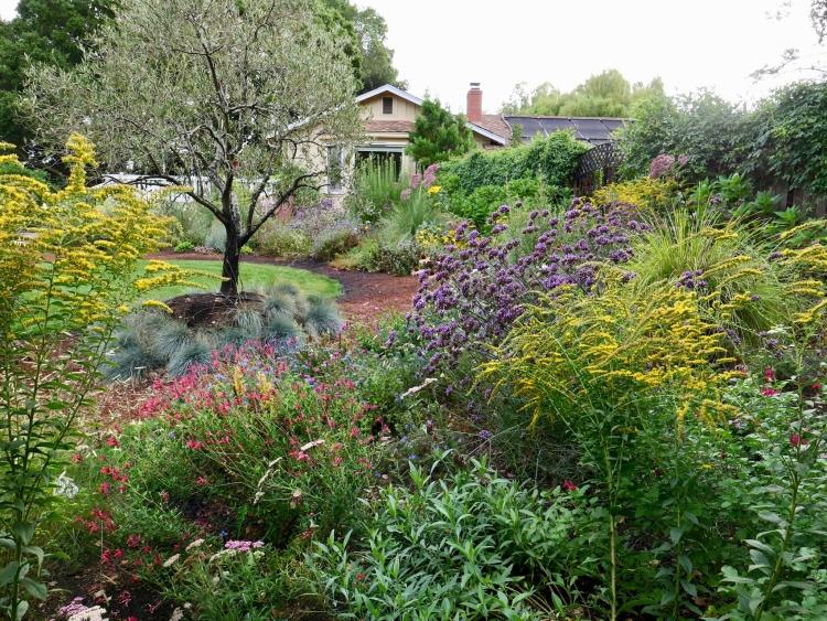 Marin County meadow garden design