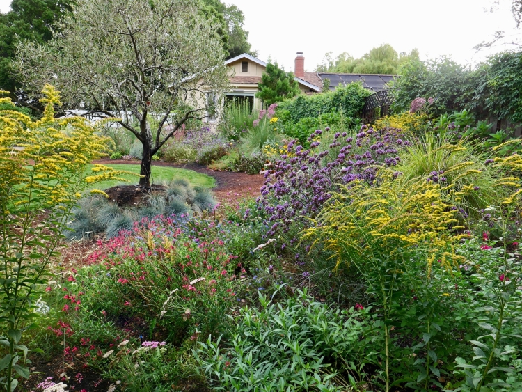 Marin County meadow garden design