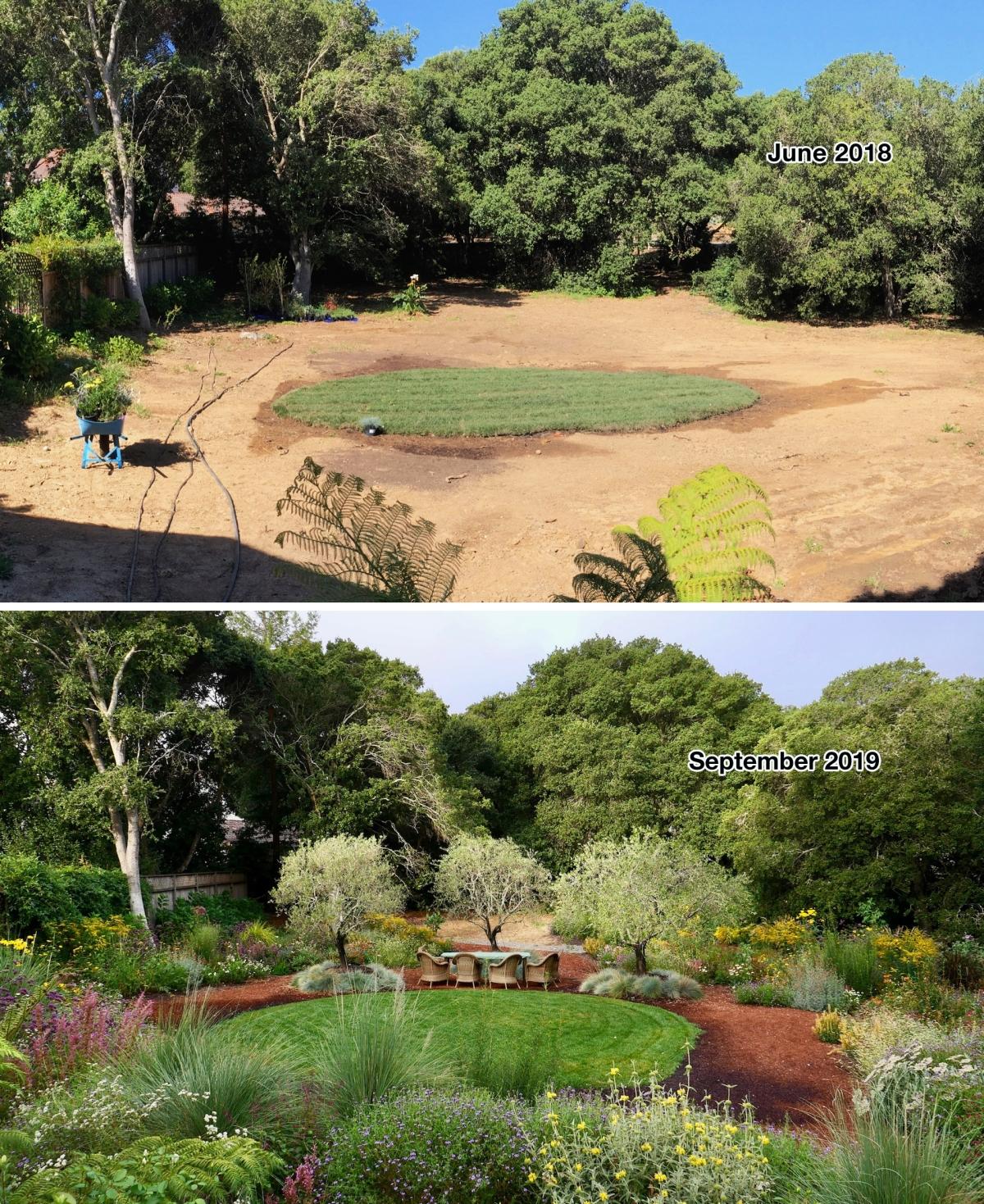 Novato habitat garden