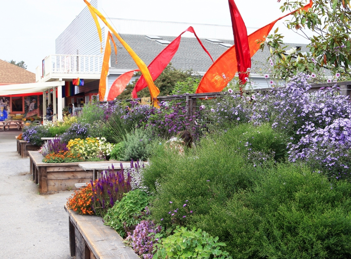 Rotary Peace Garden by Suzi Katz Garden Design